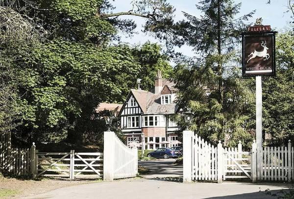 The-White-Buck-Inn 2